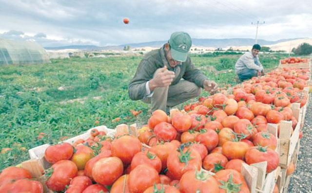 Farmers disappointed as Iraq agreements bring no relief
