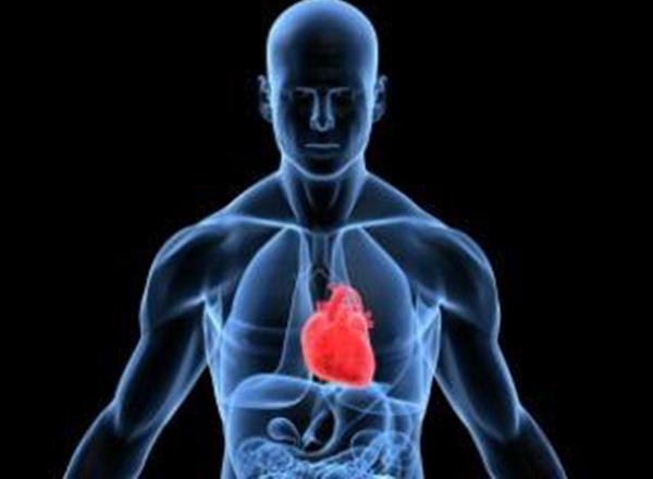 a short study on heart attacks